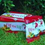 Alasan Mengapa Detox Dengan Fiforlif Sangat Ampuh Untuk Diet